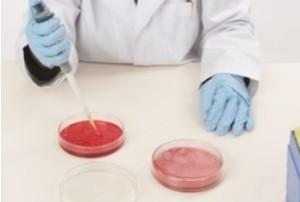 hematologist salary